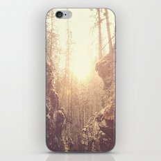 Forgotten Forest iPhone & iPod Skin