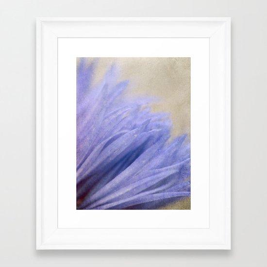 Cornflower Petals Framed Art Print