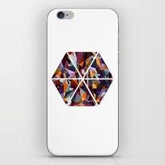 GeoHex iPhone & iPod Skin