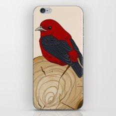 Bird on a Log iPhone & iPod Skin
