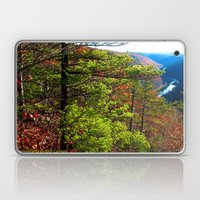 Pennsylvania Grand Canyon Laptop & iPad Skin