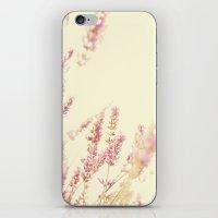 Lavender iPhone & iPod Skin