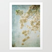 Blessings - Cherry Bloss… Art Print