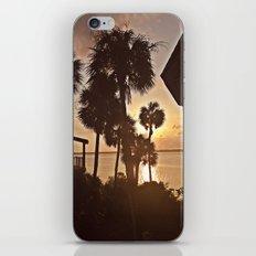 Palm Tree Silhouettes  iPhone & iPod Skin