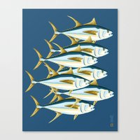 School Of Tuna, Fish Canvas Print