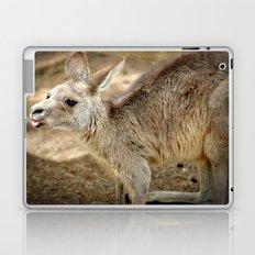 Razzie Kangaroo Laptop & iPad Skin