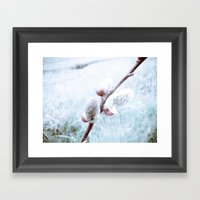 soft bud Framed Art Print