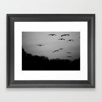 Grey Goose Flight Framed Art Print