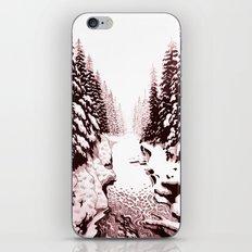 winter creek iPhone & iPod Skin