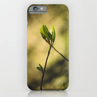 Spring at Nesmith Point iPhone 6 Slim Case