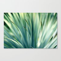 Spiked Leaves on a Slant Canvas Print