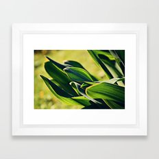 Abstract Leaves Framed Art Print
