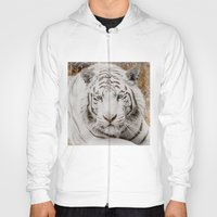 WHITE TIGER GAZE Hoody