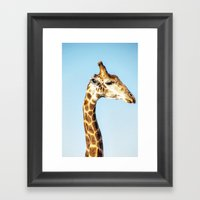 Portrait Of A Giraffe Framed Art Print