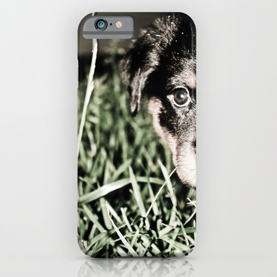 ROTTIE LOVE iPhone & iPod Case