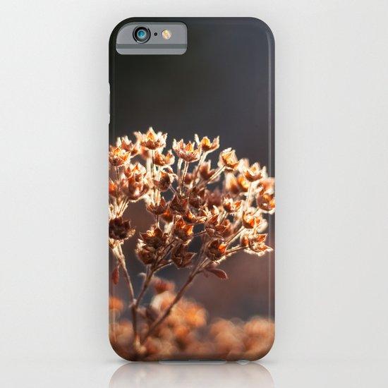 Morning's Light iPhone & iPod Case