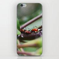 Bug Life iPhone & iPod Skin