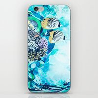 Great Barrier Reef iPhone & iPod Skin