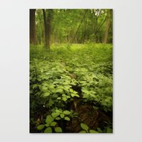 The Soil Underneath Canvas Print