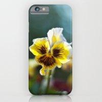 Pansy iPhone 6 Slim Case