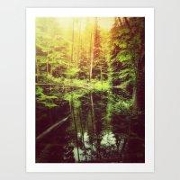 Mirror Pond Art Print