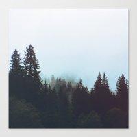 Washington Woodlands  Canvas Print