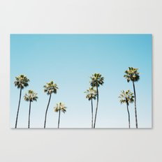 California Summer  Canvas Print