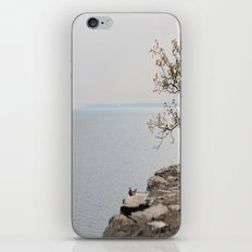 Along the North Shore iPhone & iPod Skin