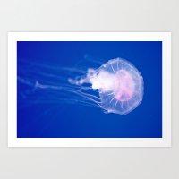 Blue Jellyfish 1 Art Print