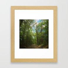 Pathway to Heaven Framed Art Print