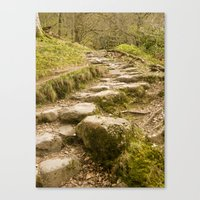 Stone Path Canvas Print