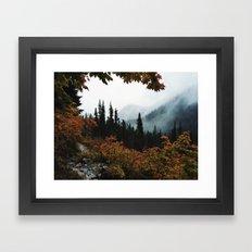 Fall Framed Trail Framed Art Print