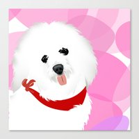 Coton De Tulear Dog Art Canvas Print