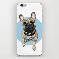 French Bulldog Blue Spot… iPhone & iPod Skin