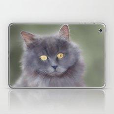 Misty Laptop & iPad Skin