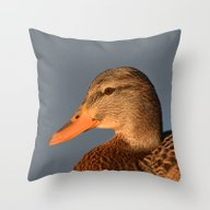 Female Duck Portrait Throw Pillow
