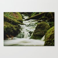 Smoky waters Canvas Print