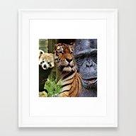 Wild Mix 2 Framed Art Print