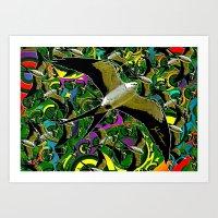 Swallow Tailed Kite Art Print