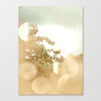 Spring Bokeh Canvas Print