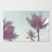 Three Palms Canvas Print