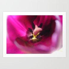 Tulip Secrets Art Print