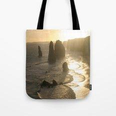 Evolutionary history of life on Earth  Tote Bag