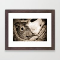 Guinea Pig Love Framed Art Print