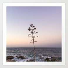 portrait of a tree no.1  Art Print