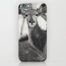 Kudu iPhone 6s Slim Case