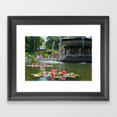 Central Park Flowers in Fountain Framed Art Print
