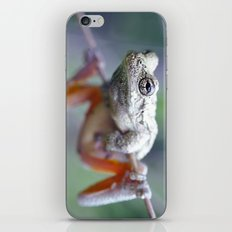 The Acrobat iPhone & iPod Skin
