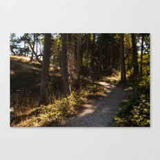 Sunworn Canvas Print