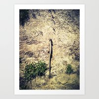 In My Path Art Print